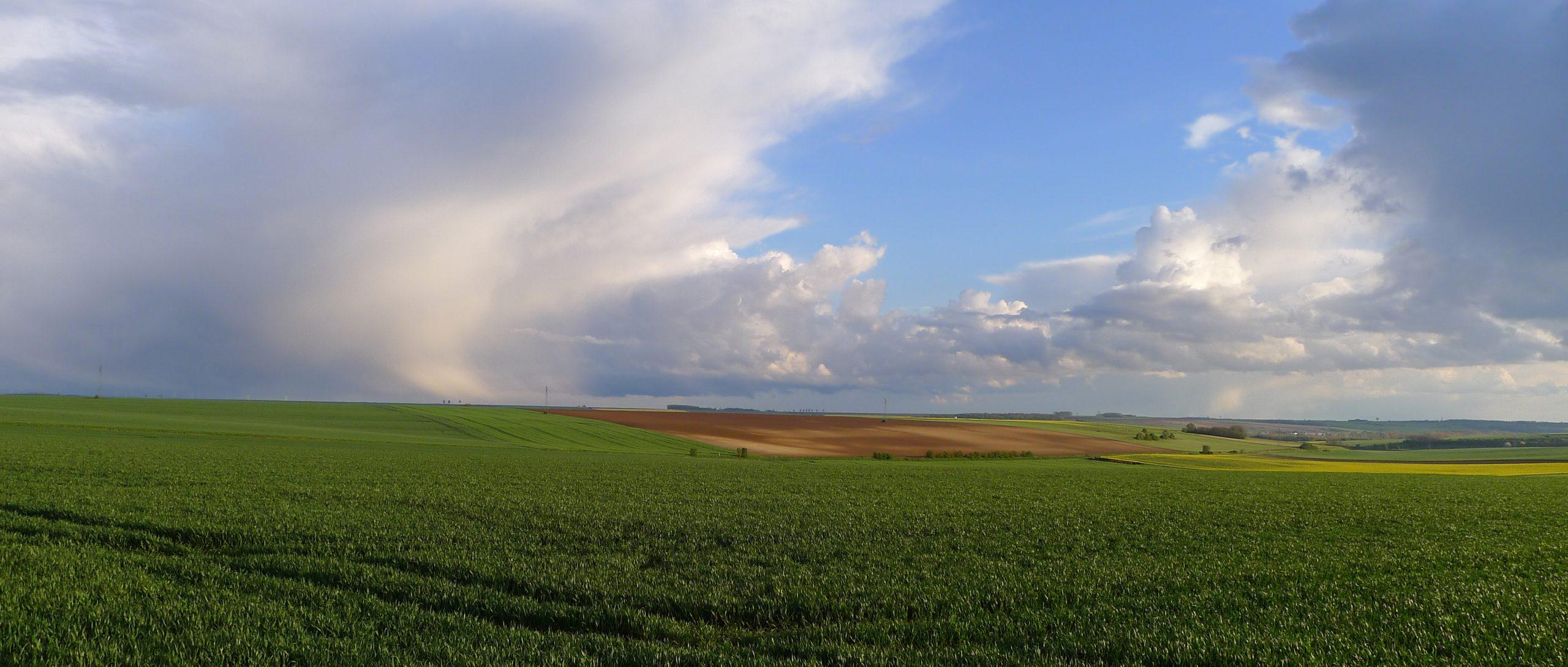 Terres dans les Hauts-de-France