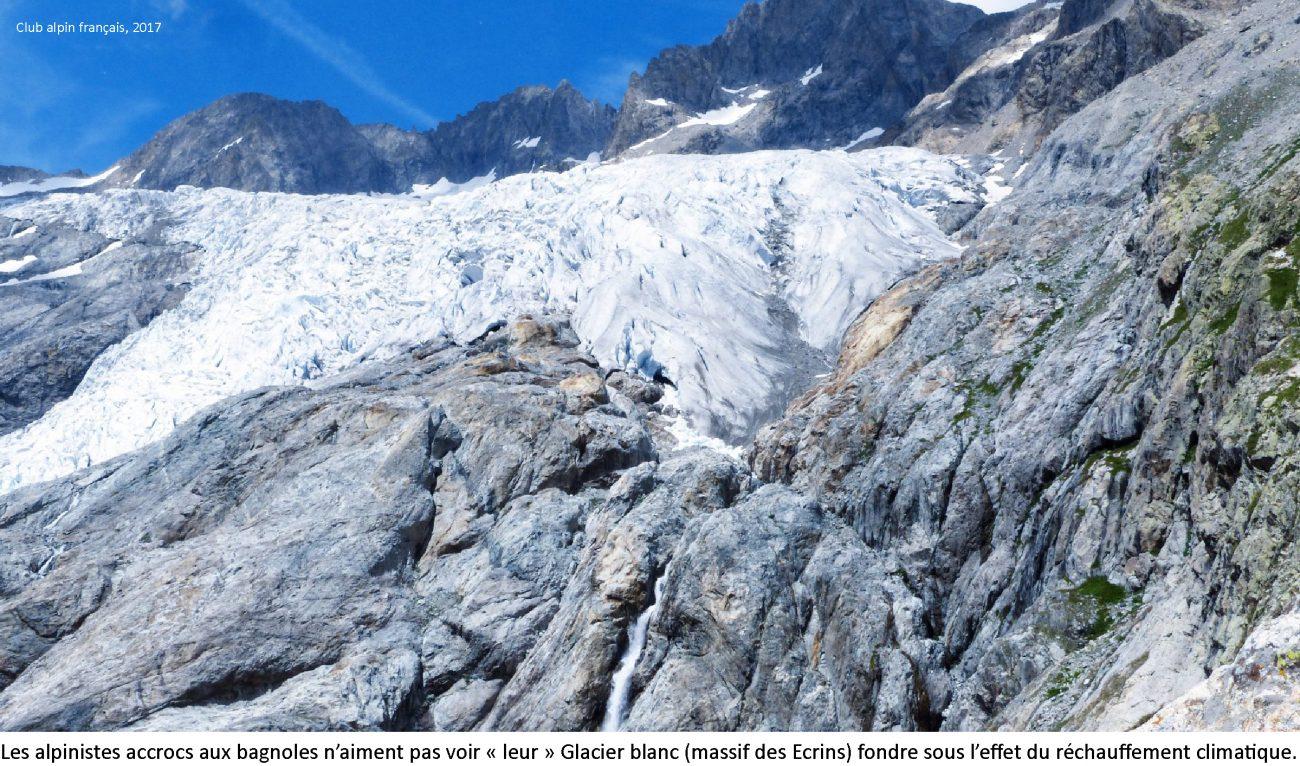 ventdouxprod 2018 nicolas barbier autos ovins gros proprios trio gagnant haut-alpin avant gueule de bois glacier blanc réchauffement climatique