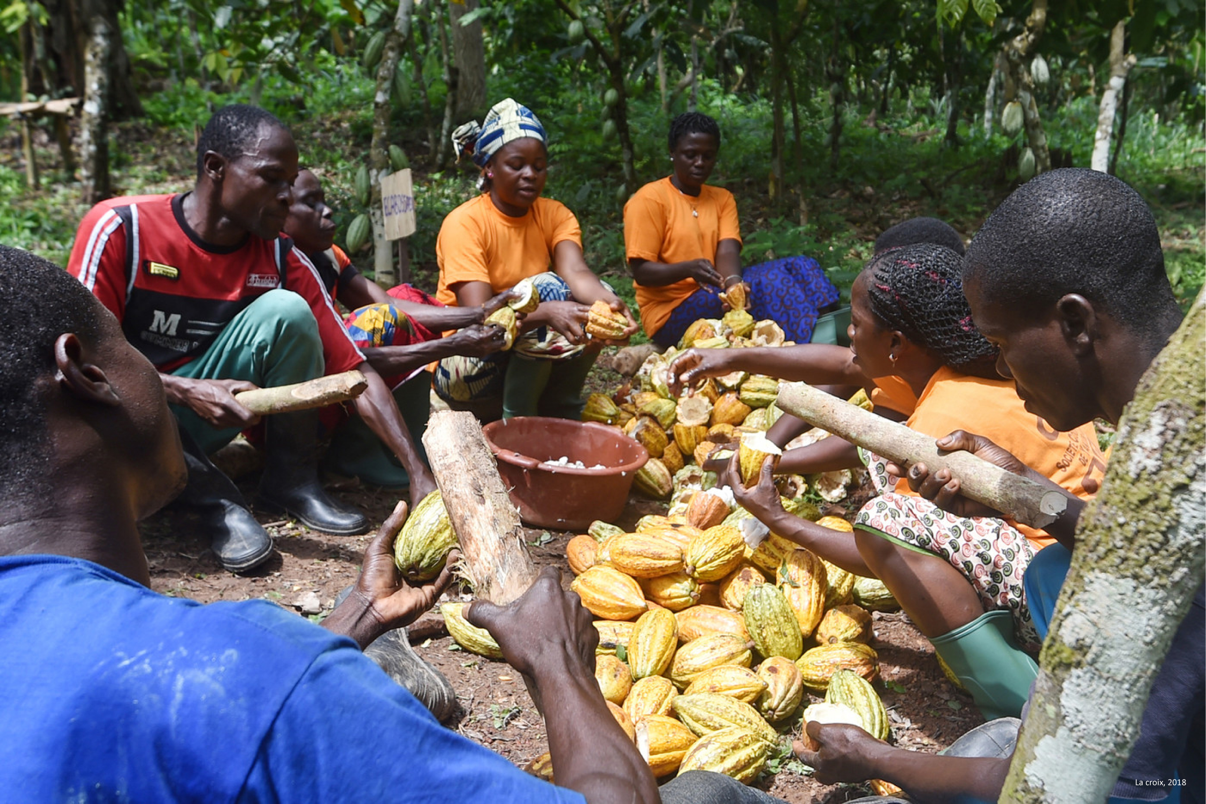 ventdouxprod 2019 nicolas barbier if my continent weren't so ruthless with african economic refugees ivory coast cocoa workers